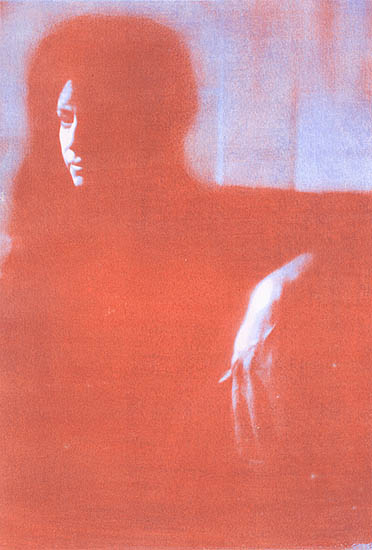 A Portrait of a Woman in Shadow