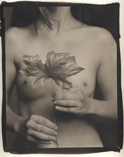 Maple Leaf and Female Nude 2005/2008. Platinum-palladium print unmounted