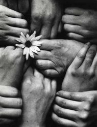 Michel Joly - Hands and Flower (Fleur aux Poings) Click for more Images