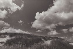 Alfred Eisenstaedt - Dunes of Squibnocket Beach, Martha's Vineyard Click for more Images