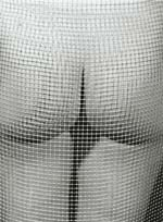 Marcel Marien - Untitled (Nude and Mesh) Click for more Images
